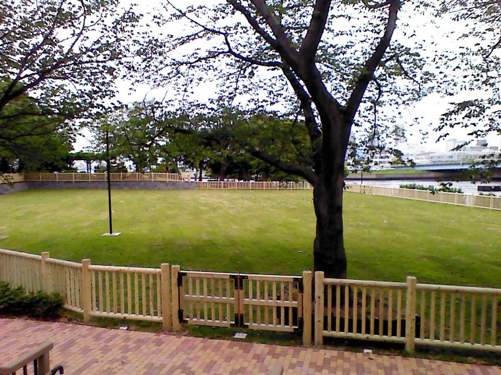 新木場公園バーベキュー広場の進捗情報4